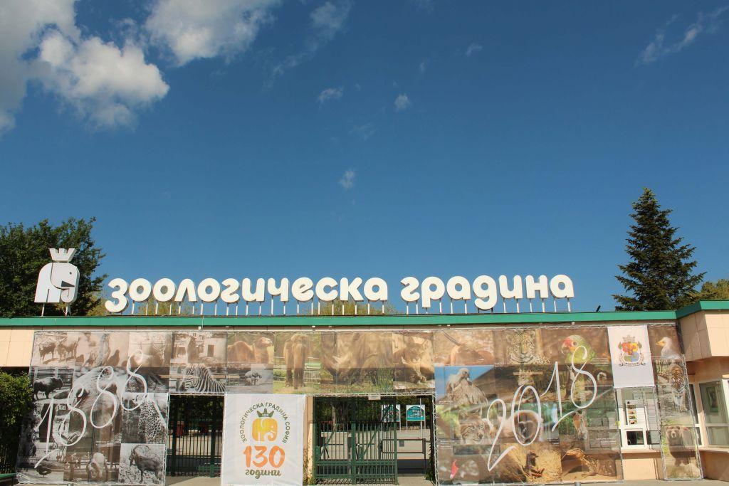 sofia-zoo